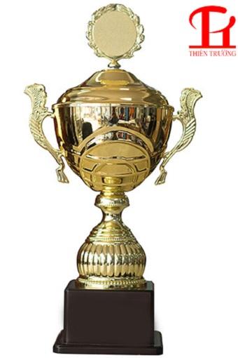 Cúp vàng thể thao 8V0188