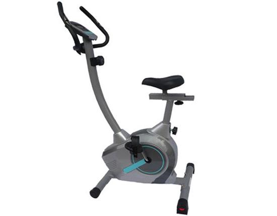 Xe đạp tập thể dục Royal 551C