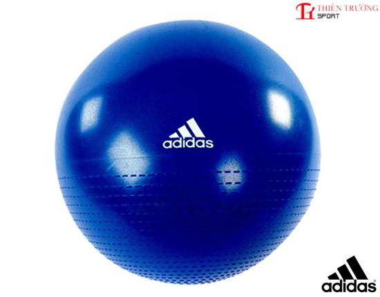 Bóng thể dục Adidas ADBL 12248