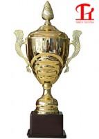 Cúp vàng thể thao 9V1113