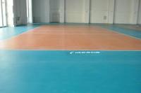 Thảm sân bóng chuyền Enlio