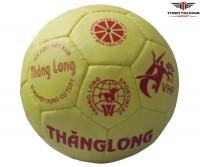 Bóng ném Thăng Long