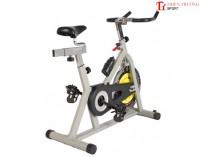 Xe đạp tập thể dục CJH - P0601